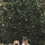 32_Ar vitaminai šunims yra būtini